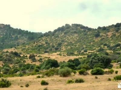 Puerto Cruz Verde,ermita Navahonda;trekking bastones informacion sobre el tejo club de montañismo m
